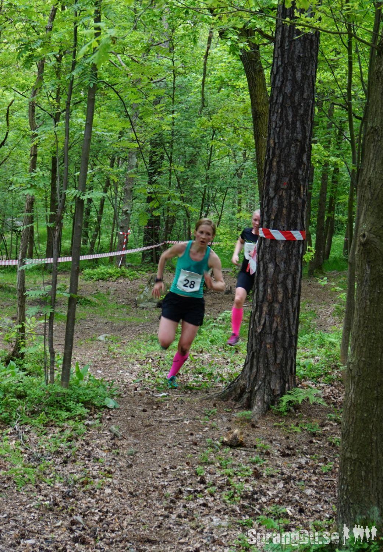 Bild från Runacademy Trail Challenge 2015
